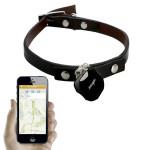 La tecnología nos ofrece un collar con GPS para localizar los perros que se pierden
